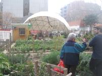 L'hort urbà, un dels espais que ha tingut més èxit a Germanetes. Els veïns demanen que el futur institut el mantingui i en promogui el seu ús.